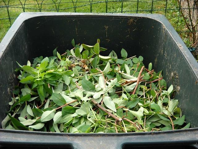 zelený odpad.jpg