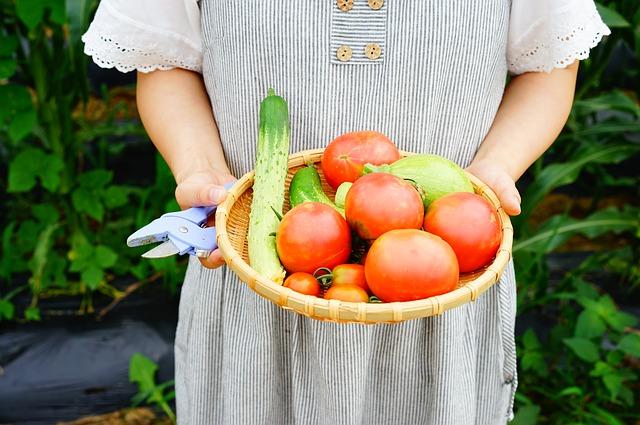 Nejlépe je si zeleninu vypěstovat sám
